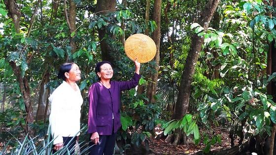 Những người giữ rừng đặc biệt ảnh 1
