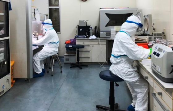 Sinh phẩm xét nghiệm Covid-19 của Việt Nam được sử dụng trên toàn cầu ảnh 2