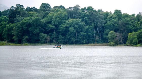 Phát hiện cá thể rùa cái Hoàn Kiếm quý hiếm ở hồ Đồng Mô ảnh 2
