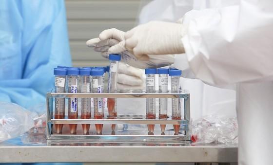 Phát hiện 32 mẫu bệnh phẩm ở Đà Nẵng thuộc biến chủng Ấn Độ và Anh ảnh 1