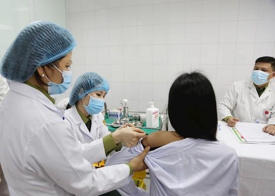 Bộ Y tế sẽ cấp phép lưu hành khẩn cấp cho vaccine Nano Covax của Việt Nam  ảnh 1