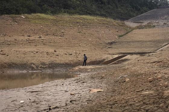 Cây lương thực khô cháy, chết dần vì hạn hán kéo dài ở khu vực Trung Trung bộ ảnh 4