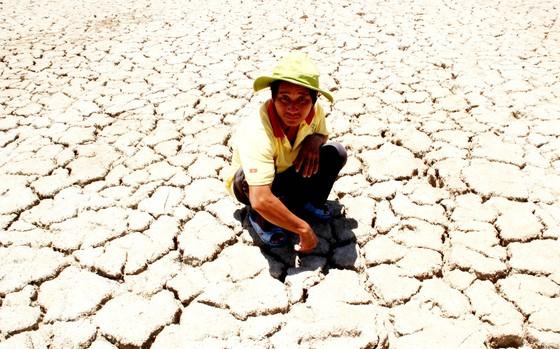 Nam Trung bộ hạn hán, nông dân điêu đứng ảnh 1
