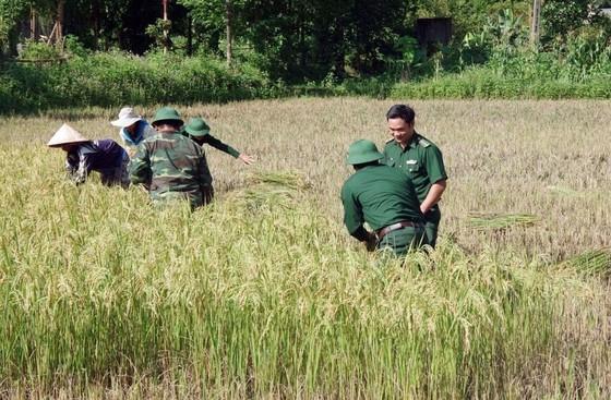Phó Thủ tướng Trịnh Đình Dũng chỉ đạo công tác ứng phó bão số 5 tại Thừa Thiên - Huế ảnh 10