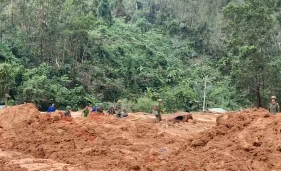 Tìm thấy thêm 3 thi thể tại khu vực Tiểu khu 67  ảnh 1