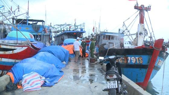 Các tỉnh miền Trung khẩn trương ứng phó bão số 5 đổ bộ  ảnh 11
