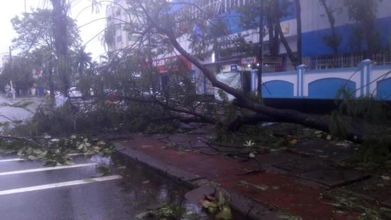 Hà Tĩnh: Bão số 2 đổ bộ khiến hàng loạt cây xanh, cột điện, biển hiệu... bị gãy đổ ảnh 12