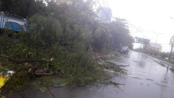 Hà Tĩnh: Bão số 2 đổ bộ khiến hàng loạt cây xanh, cột điện, biển hiệu... bị gãy đổ ảnh 15