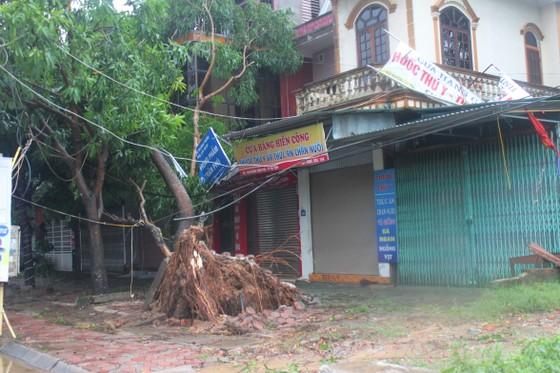 Hà Tĩnh: Bão số 2 đổ bộ khiến hàng loạt cây xanh, cột điện, biển hiệu... bị gãy đổ ảnh 14