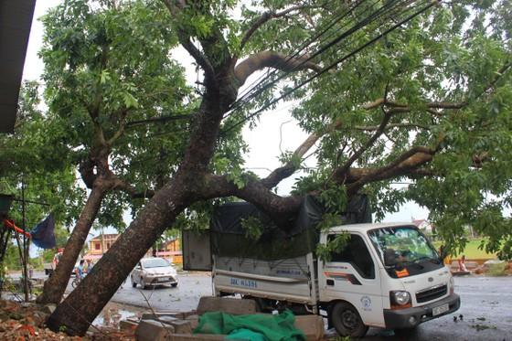 Hà Tĩnh: Bão số 2 đổ bộ khiến hàng loạt cây xanh, cột điện, biển hiệu... bị gãy đổ ảnh 20