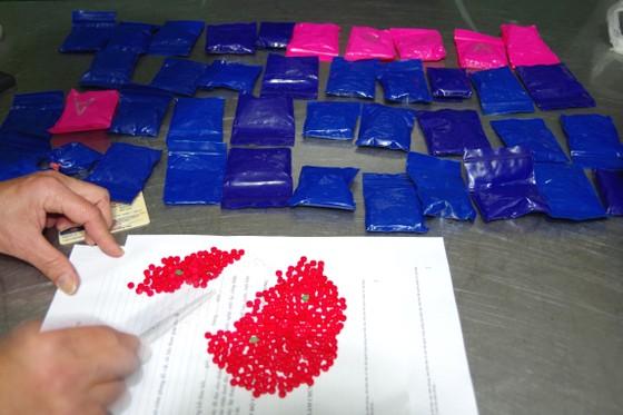 Bắt đối tượng vận chuyển 8.000 viên ma túy tổng hợp ở biên giới Hà Tĩnh ảnh 1