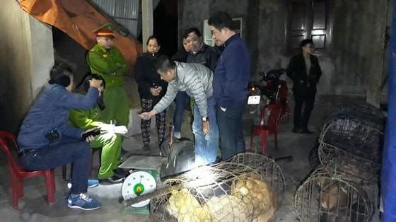 Triệt phá đường dây trộm và tiêu thụ chó với số lượng lớn ở Hà Tĩnh ảnh 1
