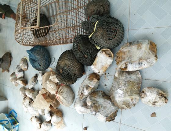 Bắt quả tang vụ vận chuyển trái phép động vật hoang dã từ Lào về Việt Nam ảnh 2
