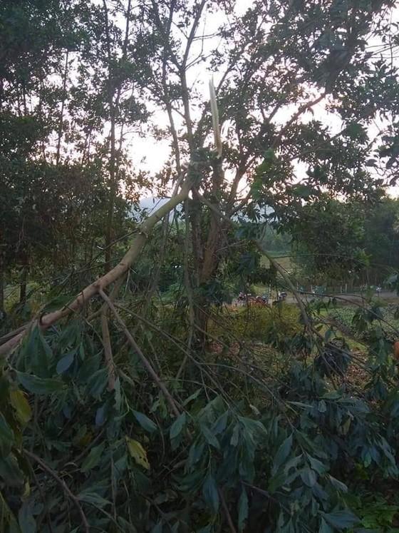 Hà Tĩnh: Bất ngờ xuất hiện mưa kèm lốc xoáy khiến nhiều nhà dân bị tốc mái ảnh 10