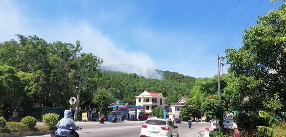 Tạm giữ một người đàn ông nghi liên quan vụ cháy rừng ở Hà Tĩnh ảnh 1