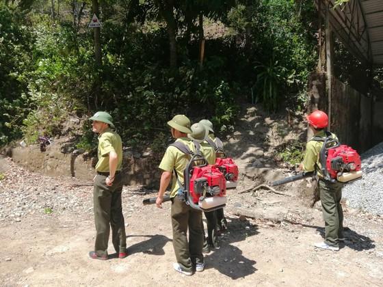 Tạm giữ một người đàn ông nghi liên quan vụ cháy rừng ở Hà Tĩnh ảnh 4