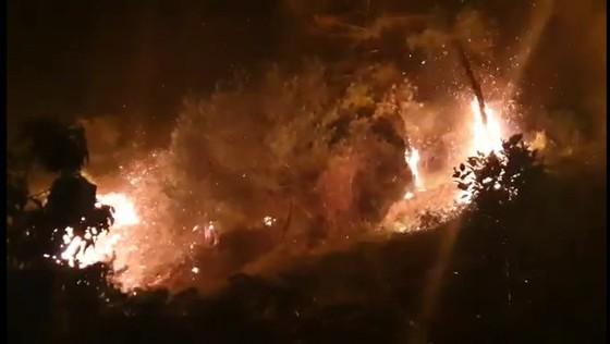 Khống chế đám cháy rừng trong đêm ở Hà Tĩnh ảnh 2
