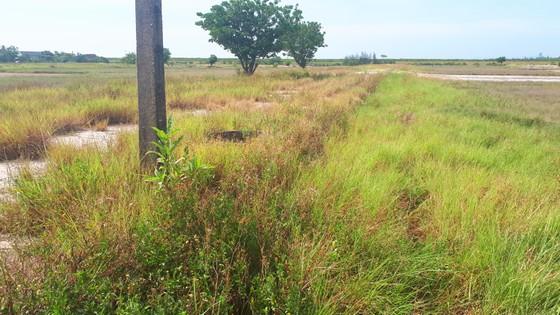 Hoang vắng ở cánh đồng muối Hộ Độ ảnh 6
