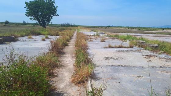 Hoang vắng ở cánh đồng muối Hộ Độ ảnh 12
