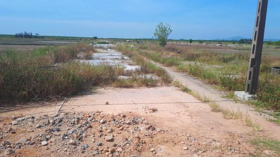 Hoang vắng ở cánh đồng muối Hộ Độ ảnh 14