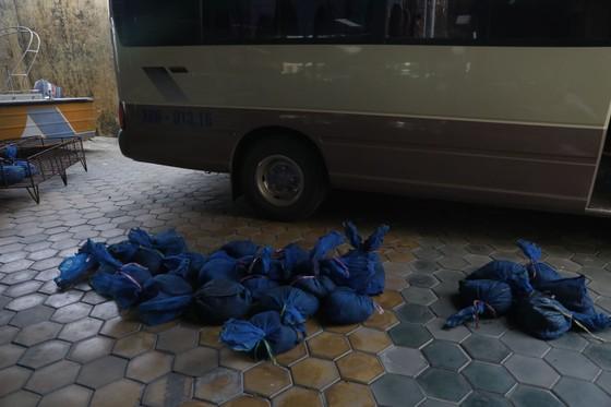 Bắt vụ vận chuyển trái phép 30 cá thể tê tê từ Lào về Việt Nam ảnh 1