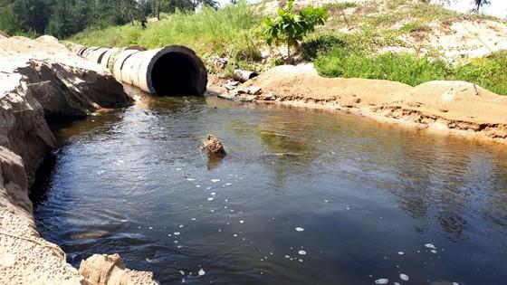 Mùi hôi thối bên cơ sở nuôi tôm xả nước bẩn ra môi trường ảnh 4
