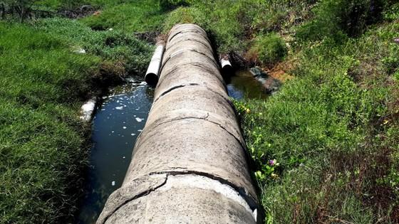 Mùi hôi thối bên cơ sở nuôi tôm xả nước bẩn ra môi trường ảnh 5