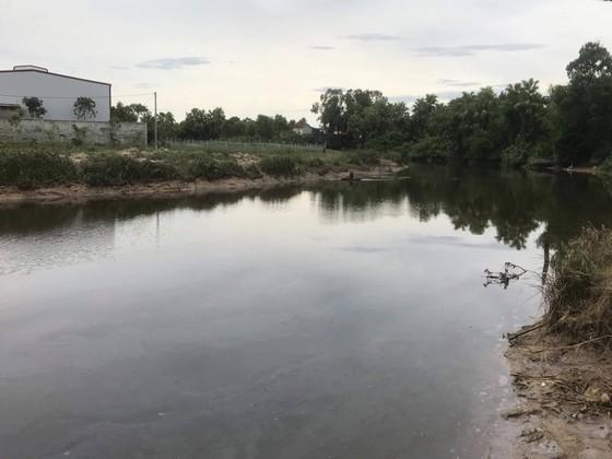 Đang tìm bắt cá sấu xuất hiện trên sông cầu Đông ở Hà Tĩnh ảnh 1