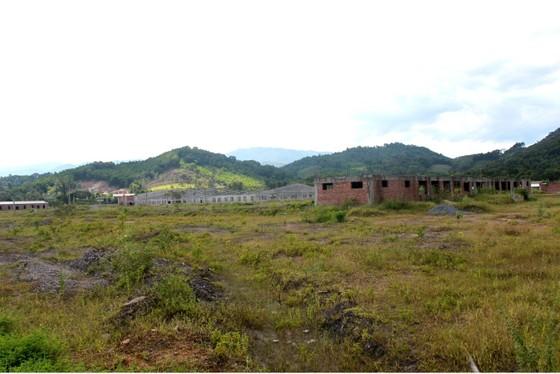 Nhiều dự án tại Khu công nghiệp Đại Kim bị trì trệ, dở dang, bỏ hoang ảnh 2