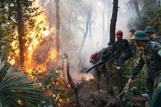 Đốt rác gây cháy rừng kinh hoàng ở Hà Tĩnh, một người dân lãnh án tù ảnh 1
