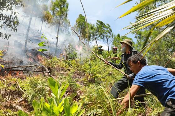 Đốt rác gây cháy rừng kinh hoàng ở Hà Tĩnh, một người dân lãnh án tù ảnh 3