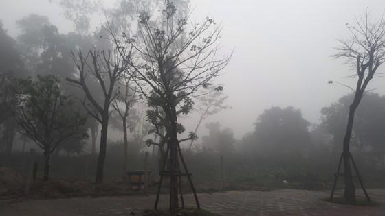 Sương mù phủ kín ở Hà Tĩnh ảnh 11