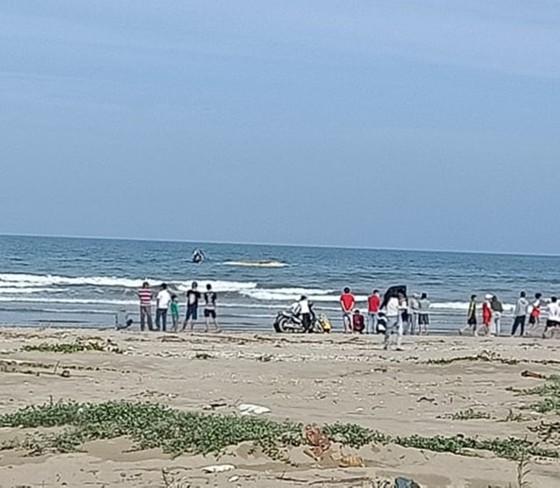 Phát hiện xác cá voi lớn trôi dạt vào bờ biển Hà Tĩnh ảnh 6