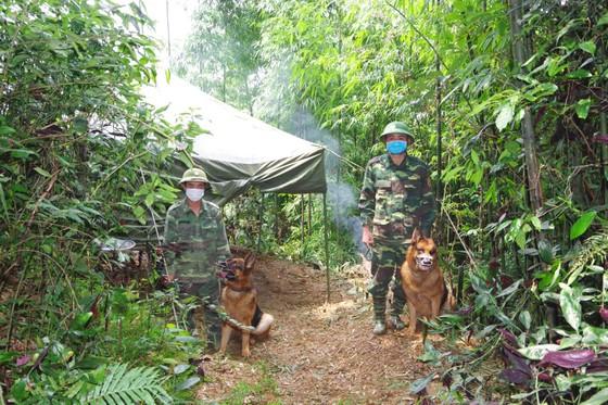Phát hiện 20 trường hợp nhập cảnh trái phép qua biên giới vào Việt Nam ảnh 4
