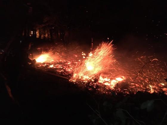 Dập tắt một vụ cháy rừng trong đêm ở Hà Tĩnh ảnh 4