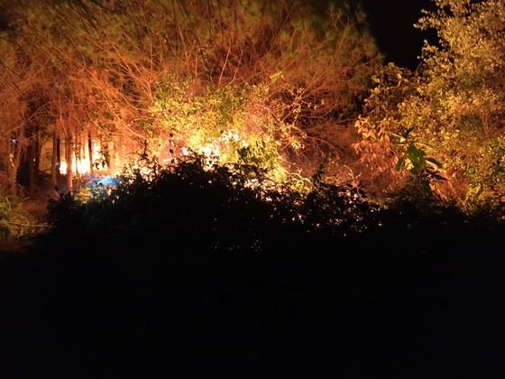 Dập tắt một vụ cháy rừng trong đêm ở Hà Tĩnh ảnh 1
