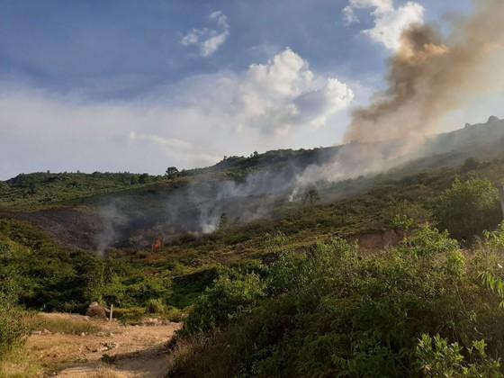 Cơ bản khống chế được đám cháy rừng ở Hà Tĩnh ảnh 4