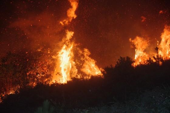 Cơ bản khống chế được đám cháy rừng ở Hà Tĩnh ảnh 11