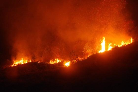 Cơ bản khống chế được đám cháy rừng ở Hà Tĩnh ảnh 10