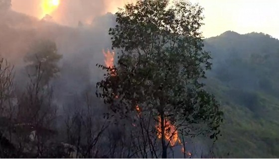 Cơ bản khống chế được đám cháy rừng ở Hà Tĩnh ảnh 6
