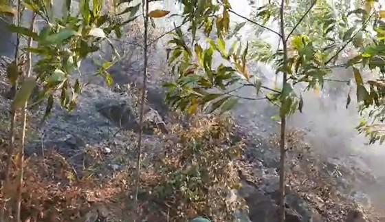Vừa được khống chế, lửa bùng phát trở lại trên dãy núi ở Hà Tĩnh ảnh 2