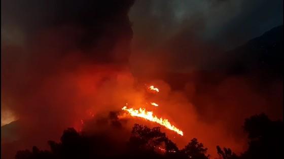 Cơ bản khống chế được đám cháy rừng ở Hà Tĩnh ảnh 5