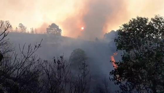Cơ bản khống chế được đám cháy rừng ở Hà Tĩnh ảnh 3