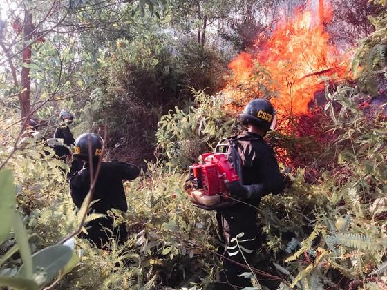 Vừa được khống chế, lửa bùng phát trở lại trên dãy núi ở Hà Tĩnh ảnh 5