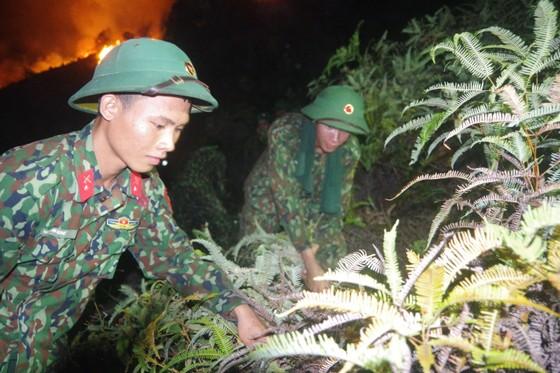 Cơ bản khống chế được đám cháy rừng ở Hà Tĩnh ảnh 14