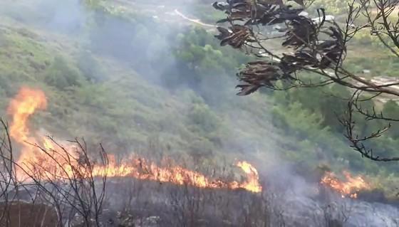Cơ bản khống chế được đám cháy rừng ở Hà Tĩnh ảnh 9