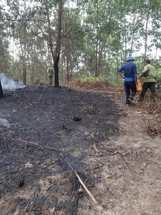 Kịp thời khống chế đám cháy tại khu vực rừng keo ở Hà Tĩnh ảnh 2