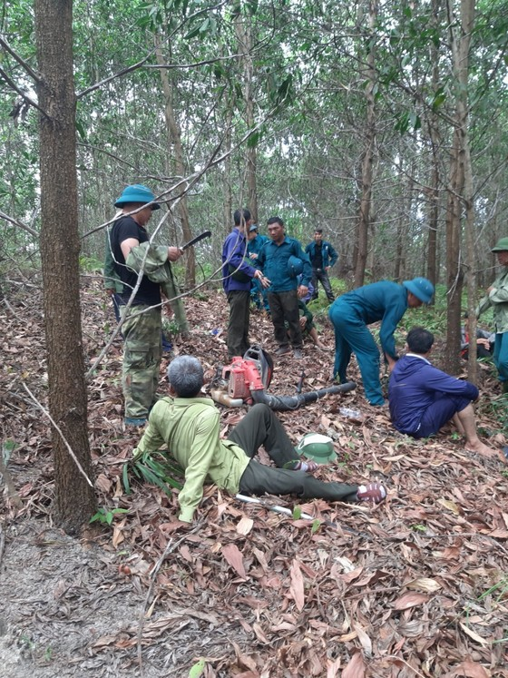 Kịp thời khống chế đám cháy tại khu vực rừng keo ở Hà Tĩnh ảnh 3