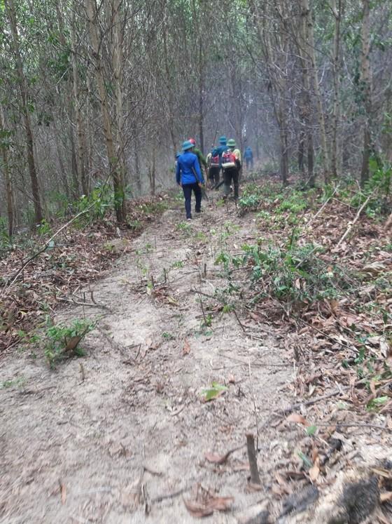 Kịp thời khống chế đám cháy tại khu vực rừng keo ở Hà Tĩnh ảnh 1