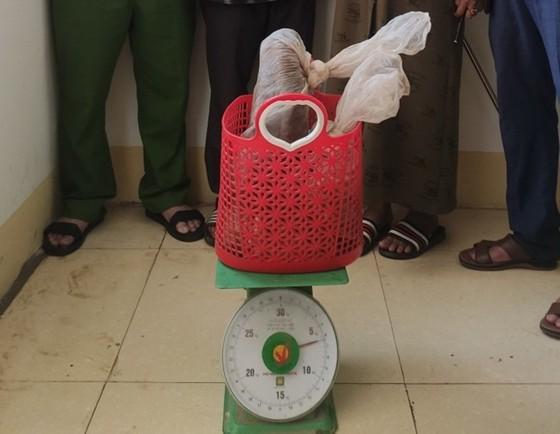Bắt đối tượng vận chuyển 2 con rắn hổ mang nặng 6kg ảnh 1
